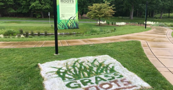 'Grass Roots' Initiative delivers message for turf